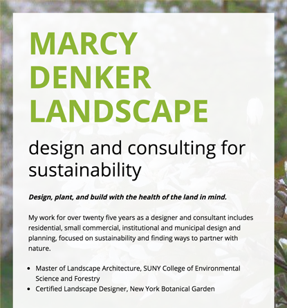 Marcy Denker Landscape - Website Copy