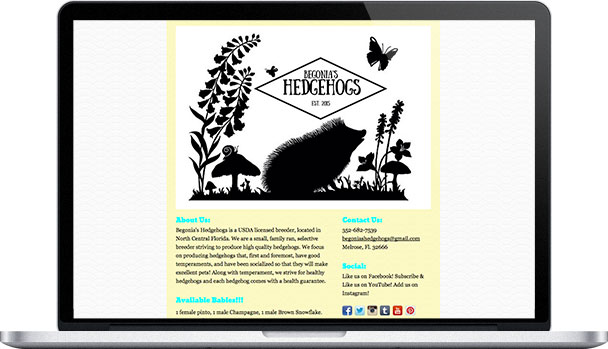 Simple Website Begonia's Hedgehogs
